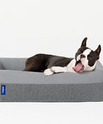 Now You Can Buy a Casper Bed for Your Pup
