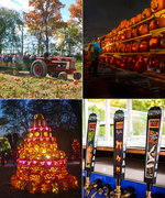 5 Totally Unique Fall Activities for the Pumpkin Obsessed