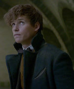 5 New Things We Learned from the Full Fantastic Beasts and Where to Find Them Trailer
