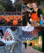 Best in Fest: 7 Boston Festivals and Street Fairs to Check Out Right Now