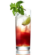 Toast to 2017 with This Refreshing Pomegranate Mojito Mocktail