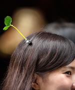 Wearing Actual Sprouts on Your Head Is Currently the Hottest Hair Trend in China