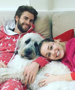 How 17 Celebrities' Pets Celebrate the Holidays