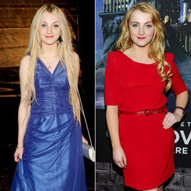 harry potter stars now