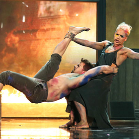 "Pink's ""Try"" Performance at the American Music Awards: Watch the Video!"