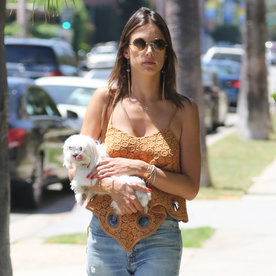 Alessandra Ambrosio Carries Her Adorable Pup as She Delivers Serious L.A. Street Style