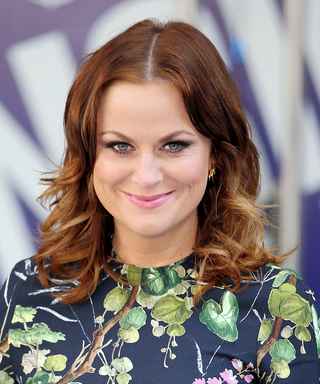 Amy Poehler Turns 44! See How the Queen of Comedy's Hair Has Changed Over the Years