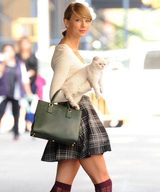 9 Stars Who Make It Cool to Be a Cat Lady