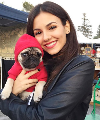 Birthday Girl Victoria Justice's 11 Cutest Instagrams Featuring Her Furry Friends