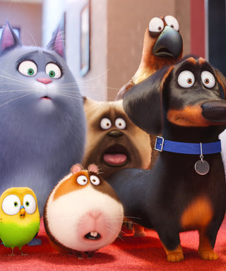 The Secret Life of Pets: Meet the Stars Behind Your New Favorite Characters