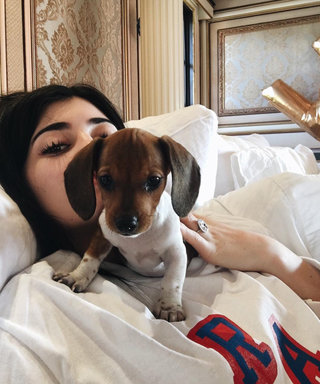 Kylie Jenner Got an Adorable Puppy for Her Birthday