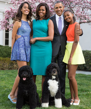 The Obamas Couldn't Look More Glam in Final White House Holiday Card