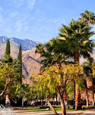Where to Go in and Near Palm Springs