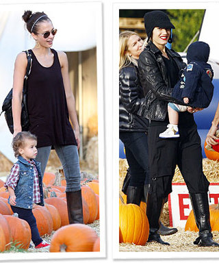 Hollywood Heads to the Pumpkin Patch