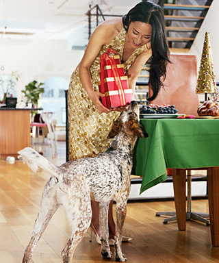 Will You Buy Gifts For Your Pets This Holiday Season?