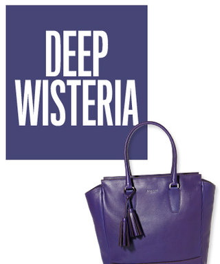 Color of the Day: Deep Wisteria