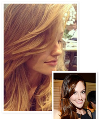 Minka Kelly Isn't a Brunette Anymore! See Her Blonde Hair Makeover