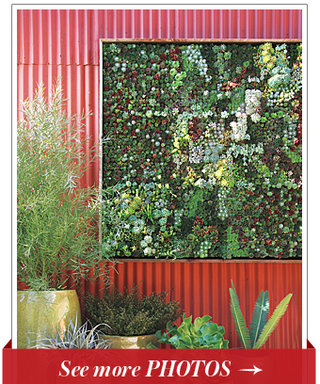 How Does Your Garden Hang? The Newest Home Trend We're Dying To Try