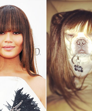 Chrissy Teigen Debuts Faux Bangs—and Lets Her Dog Try the Style Too!