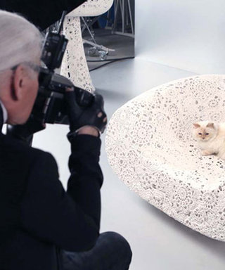 Meow! Karl Lagerfeld's Cat Choupette Will Be the First Feline to Front a Beauty Campaign