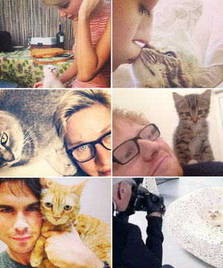What's Right Meow: 6 Adorable Celeb-Kitty Duos to Celebrate National Cat Day