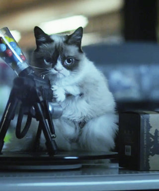 Watch the Hilarious Trailer for Grumpy Cat's Worst Christmas Ever