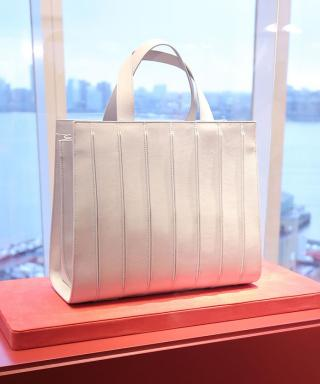 Max Mara's Whitney Bag