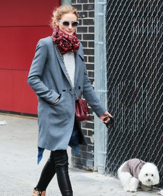 Olivia Palermo Proves She Is the Most Stylish Dog Walker Ever