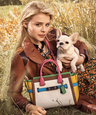 Chloë Grace Moretz Cuddles Up with an Adorable Puppy in Coach's Spring 2016 Campaign