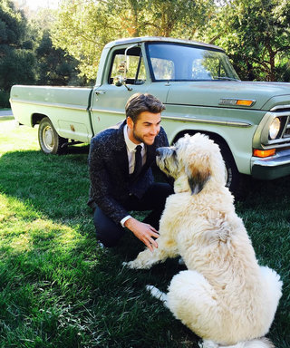 Liam Hemsworth and His Adorable Pack of Stylish Dogs Team Up to Fight Childhood Cancer