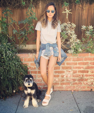 Happy Birthday Jamie Chung! 19 Reasons Her Adorable Pup Is an Instagram Star