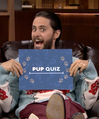 Watch Jared Leto Cuddle with Adorable Golden Retriever Puppies