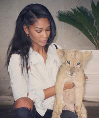 See Chanel Iman Cuddle Up with Baby Lions