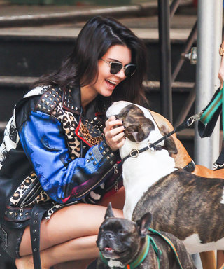 Kendall Jenner Cuddles with Pups for Photo Shoot in N.Y.C.