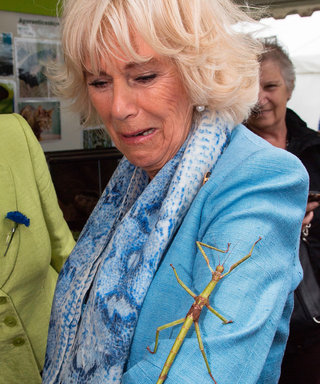 The Duchess of Cornwall Is All of Us When Faced with a Giant Bug
