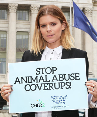 Kate Mara on Why She'll Never Stop Fighting for Animals' Rights