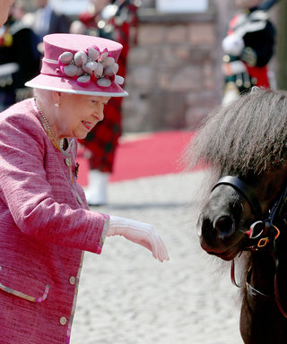 Queen Elizabeth Has NO Time for This Naughty Pony