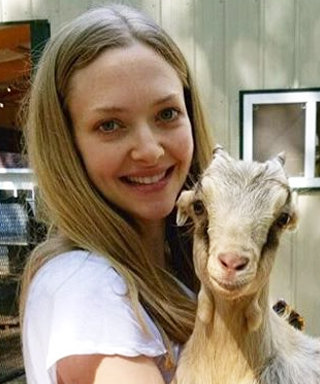 15 Pictures of Celebrities Cuddling Farm Animals on Instagram
