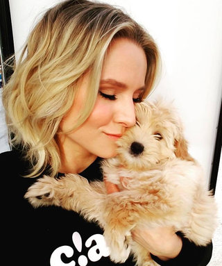 It's National Dog Day! See 29 Celebrities Cuddling with Pups