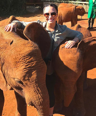 Orlando Bloom and Demi Lovato Cuddling Elephants Will Melt Your Heart
