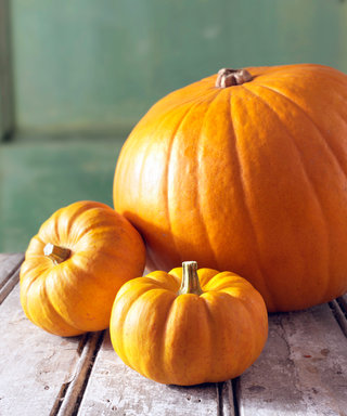 Get In the Fall Mood With These 7 Yummy Pumpkin-Flavored Foods