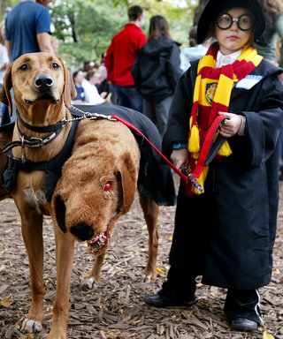 8 Halloween Couples Costumes for You and Your Pet