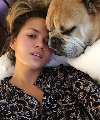 Chrissy Teigen and John Legend's Beloved Bulldog Puddy Is Going to Be Okay