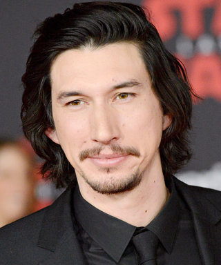 Adam Driver Has Another Cat Doppelgänger—Yes, Another