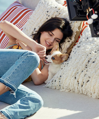 Watch Kendall Jenner Train a Puppy. Prego.