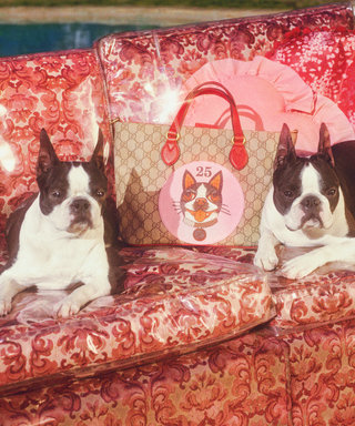 Dogs Are the Best Models of Gucci's Chinese New Year–Inspired Collection