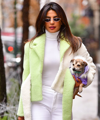 The Cozy Turtleneck Every Celebrity Seems to Own