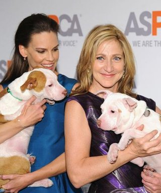 Honoree Hilary Swank's Date Was Looking Pretty Ruff at the ASPCA Bergh Ball