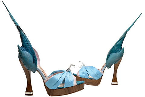 Caroline Groves Parakeet shoes