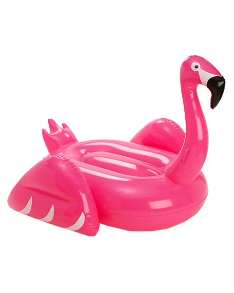 Pool Floats Embed 1